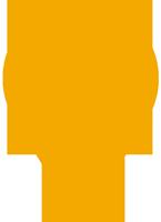 St Patrick's flat location pin icon in orange